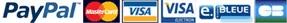 PayPal Visa MasterCard CarteBleue